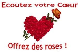 offre-saint-valentin-haiti-coeur-boldair