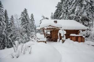 Un amour de Chalet dans la neige