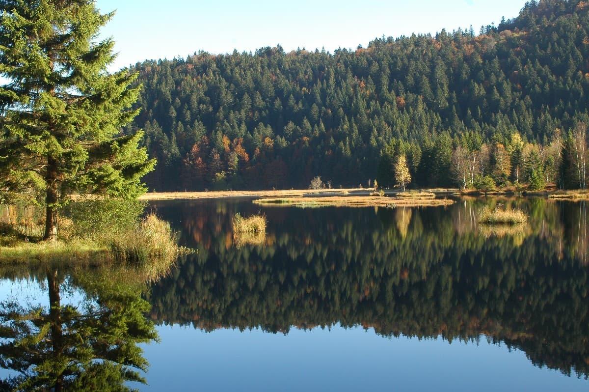 activité lac des sapins